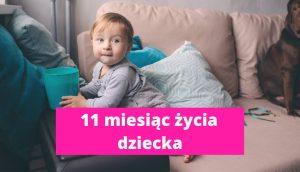 11 miesiąc życia dziecka