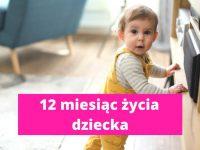 12 miesiąc życia dziecka – rozwój dziecka w 12 miesiącu życia